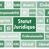 Choisir son statut juridique