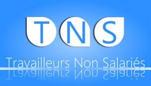 Travailleur non salarié (TNS)